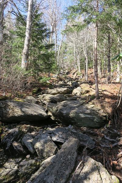 Big Tom Gap Trail -- 5,750'