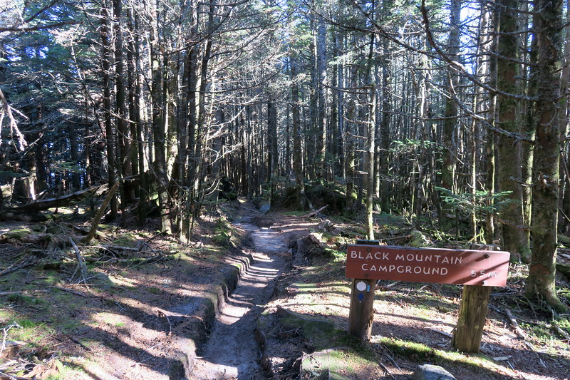 Mount Mitchell Trail -- 6,480'