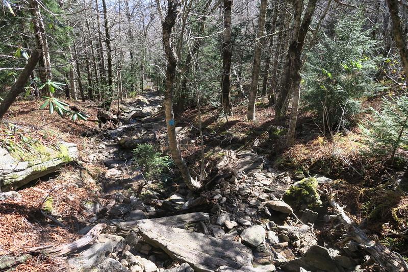 Big Tom Gap Trail -- 5,850'