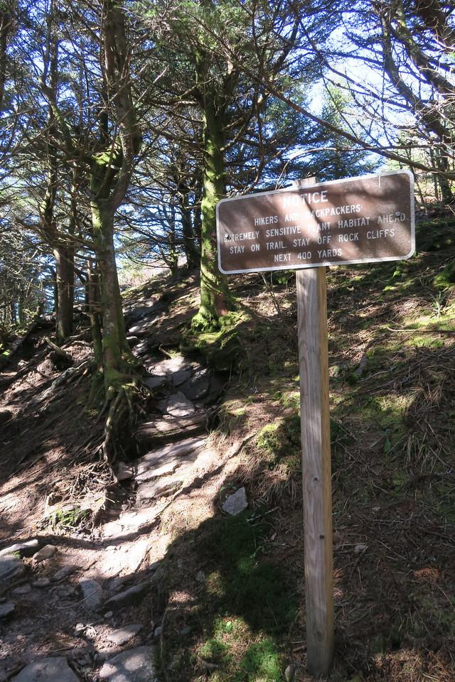 Deep Gap Trail -- 6,550'