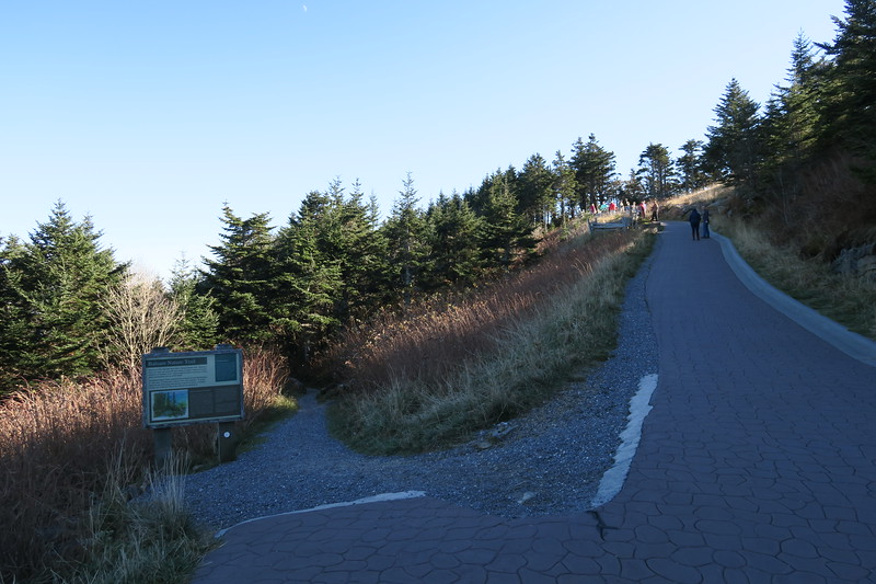 Mount Mitchell Trail-Balsam Nature-Summit Trail Junction -- 6,620'