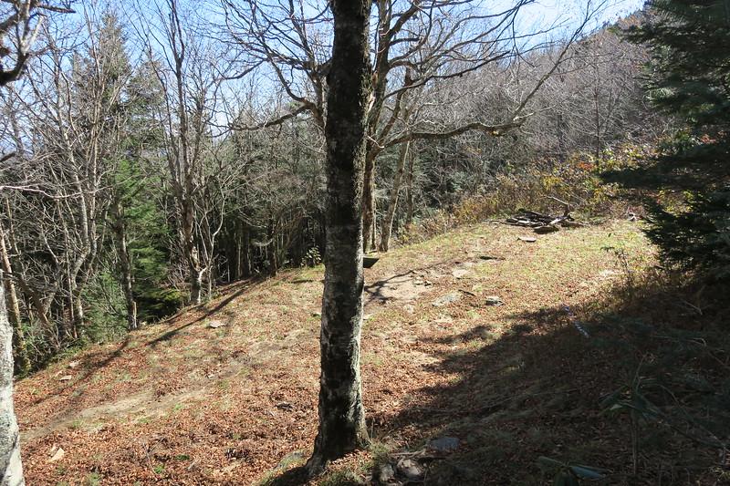 Big Tom Gap-Buncombe Horse Trail Junction -- 5,700'