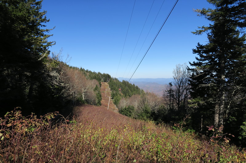 Buncombe Horse-Mount Mitchell Trail -- 5,780'