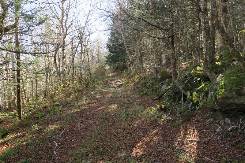 Buncombe Horse Trail -- 5,750'