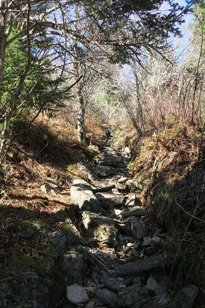 Big Tom Gap Trail -- 5,900'