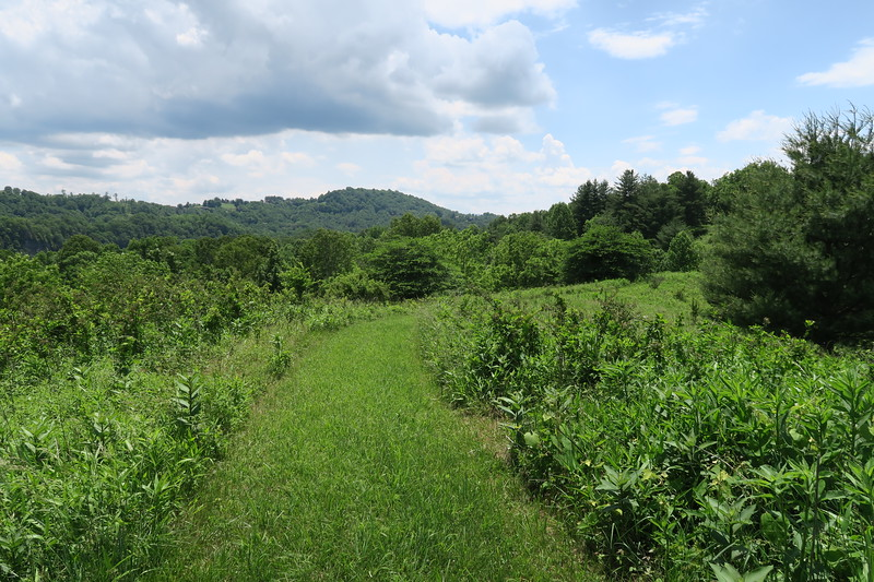 Riverview Trail