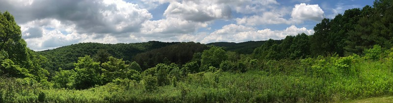 Dogwood Trail Overlook