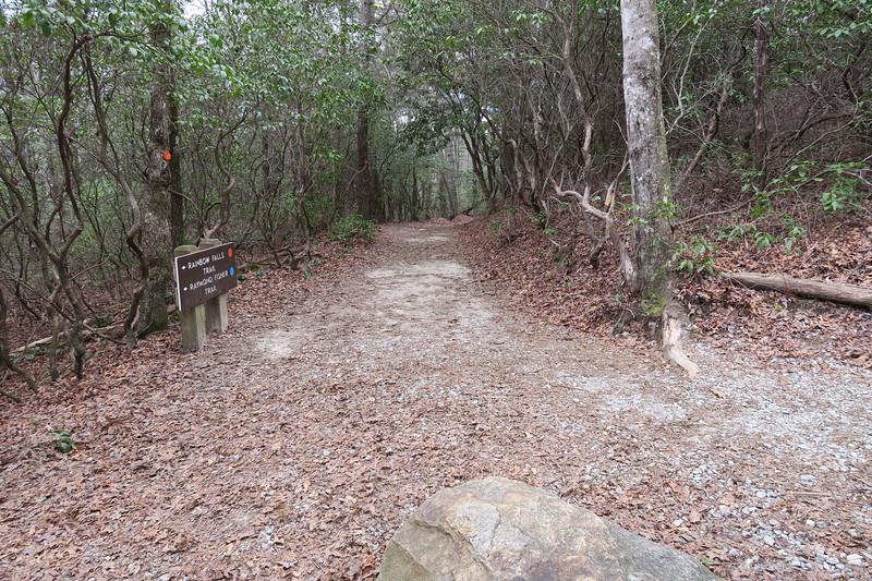 Raymond Fisher-Rainbow Falls Trail Junction