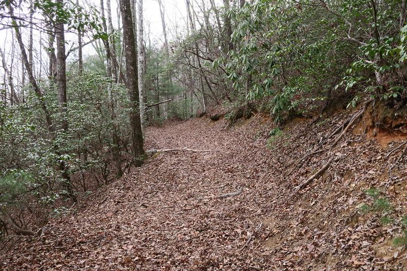 Bearwallow Creek Road -- Second Junction