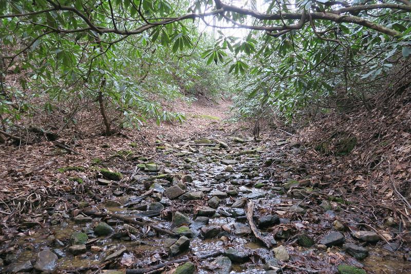 Bearwallow Creek Road