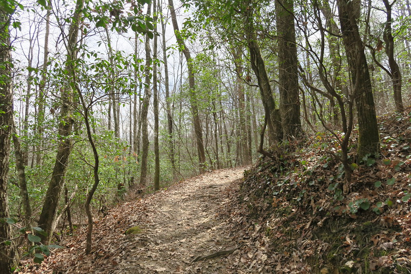 Raymond Fisher Trail