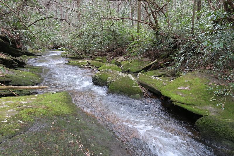 Bearwallow Creek