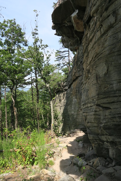 Ledge Spring Trail