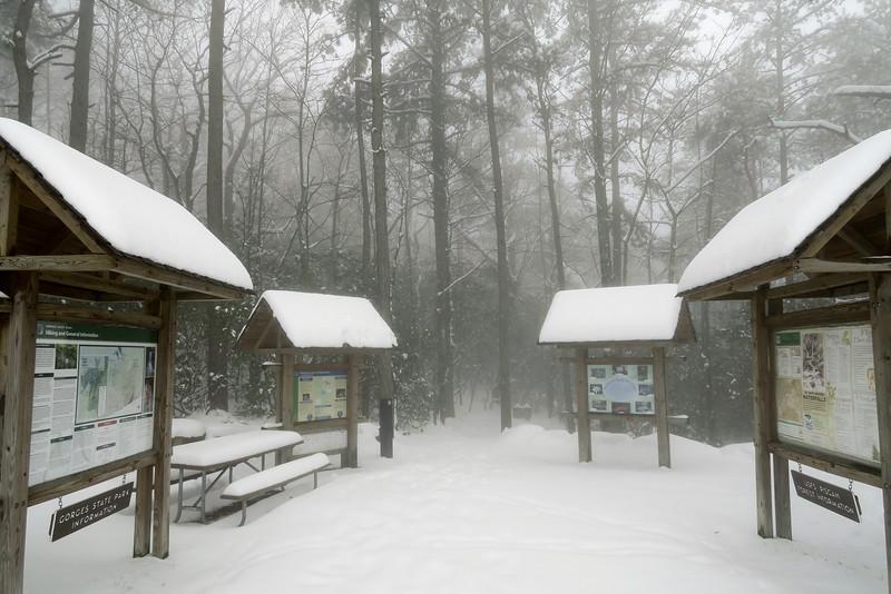 Grassy Ridge Trailhead