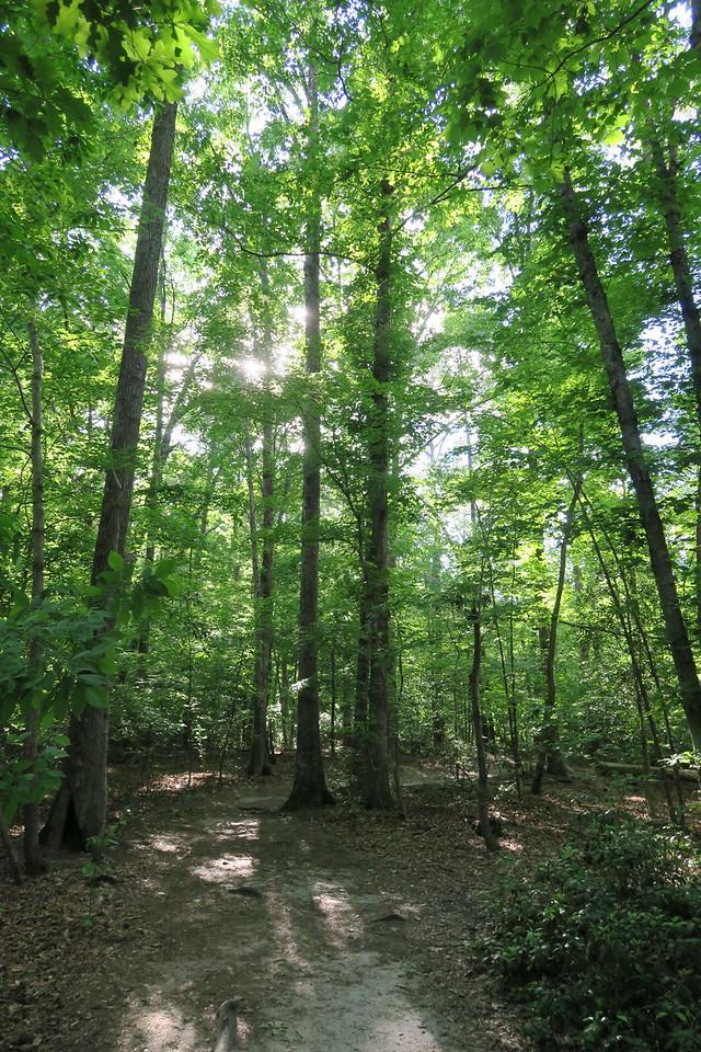 Raven Rock Loop Trail