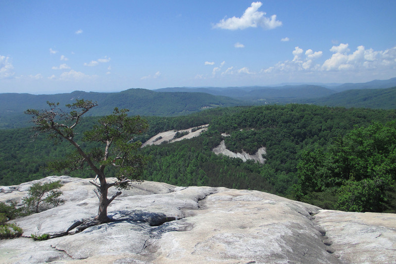 Stone Mountain Summit - 2,305'
