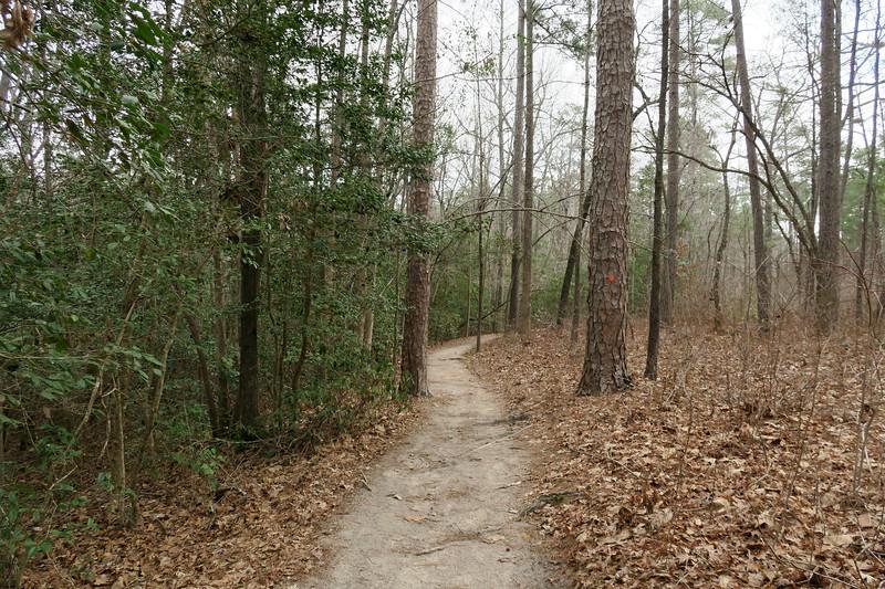 Gum Swamp Trail