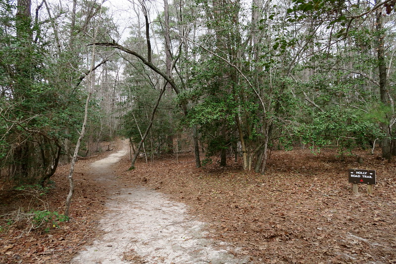 Moccasin Crossing-Holly Road Trail Junction