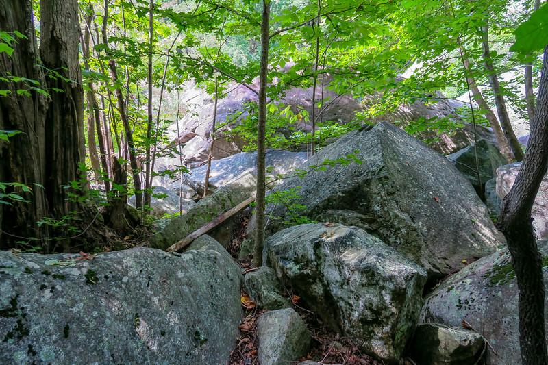 Windy Falls Base Path