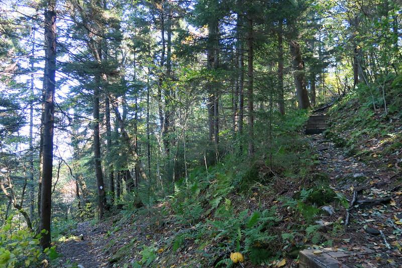 Big Butt Trail -- 5,550'