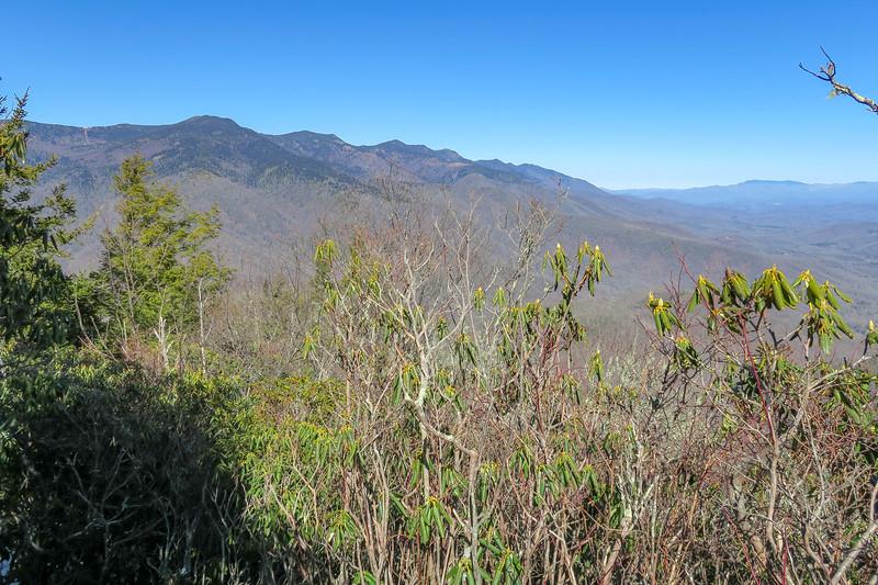 Green Knob Trail -- 4,920'