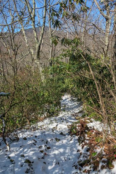 Green Knob Trail -- 3,860'