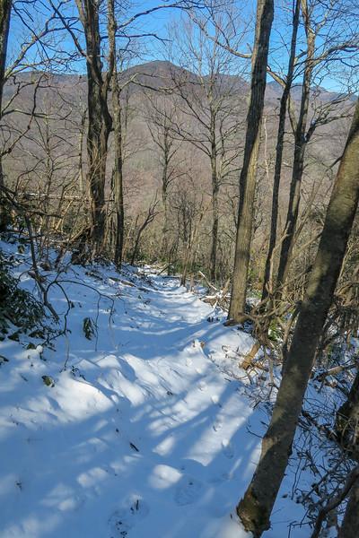 Green Knob Trail -- 4,300'
