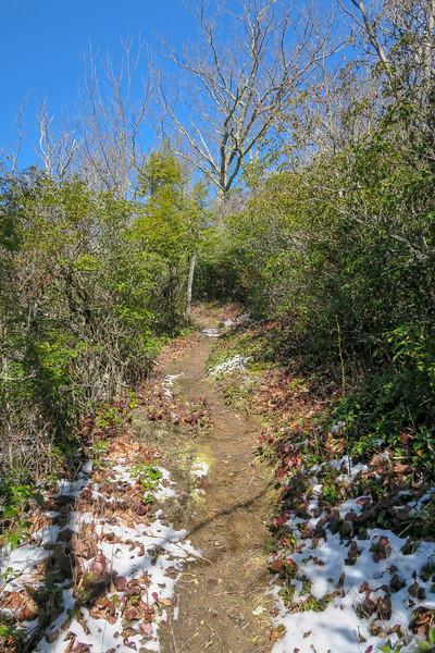 Green Knob Trail -- 3,820'