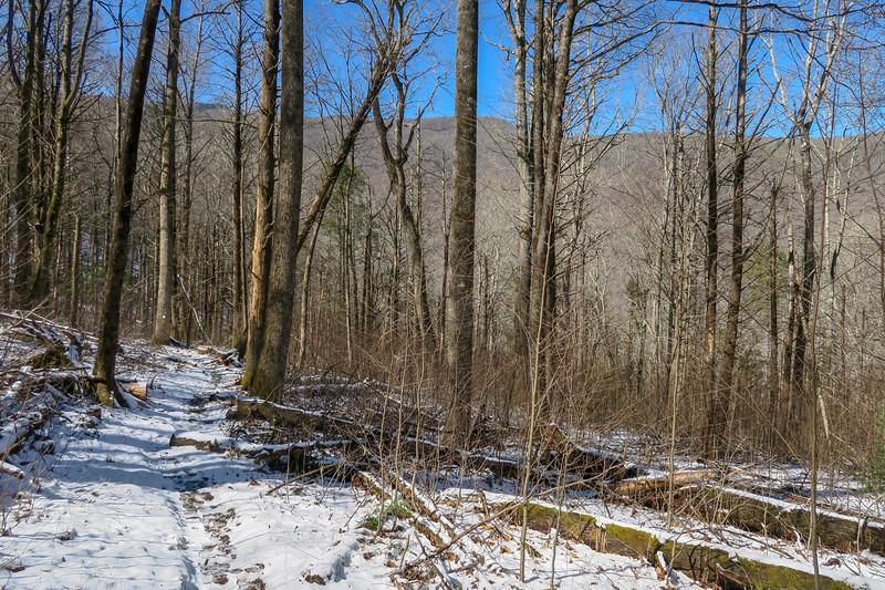 River Loop Trail (M.S.T.) -- 3,100'