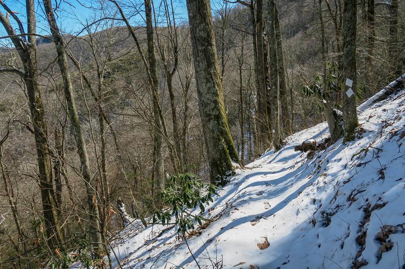 Green Knob Trail -- 4,420'