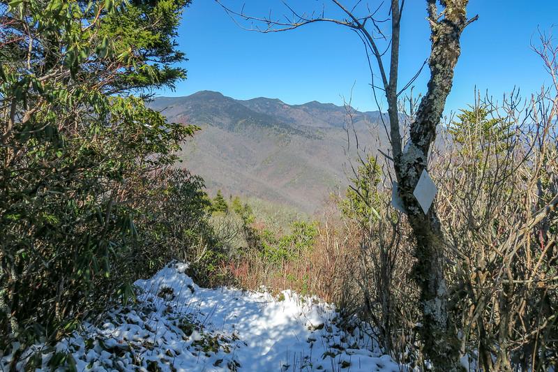 Green Knob Trail @ Lost Cove Ridge Overlook -- 4,980'