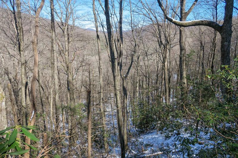 Green Knob Trail -- 3,350'