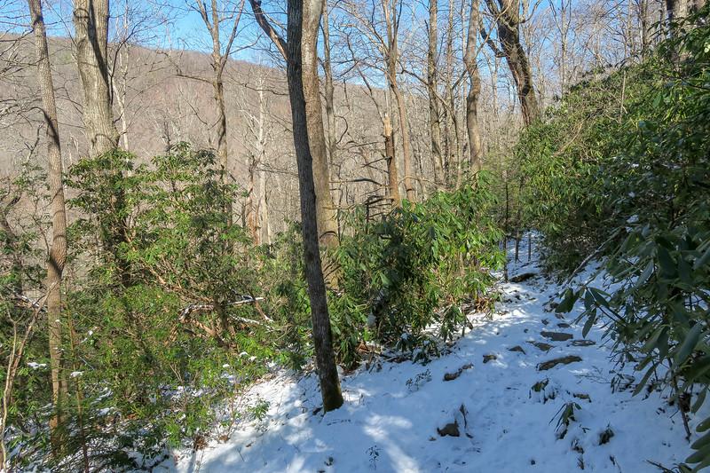 River Loop Trail -- 3,220'