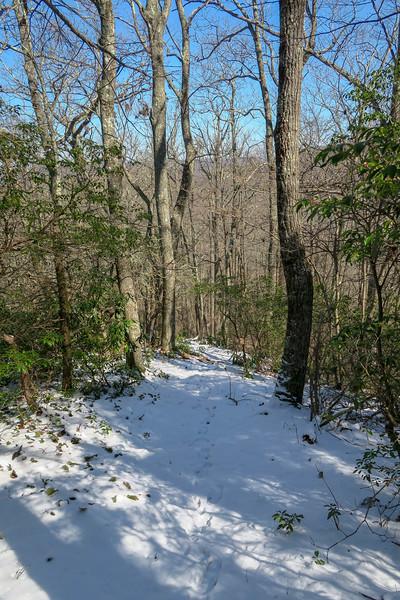 Green Knob Trail -- 3,940'