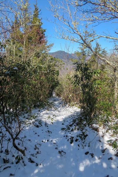 Green Knob Trail -- 5,020'