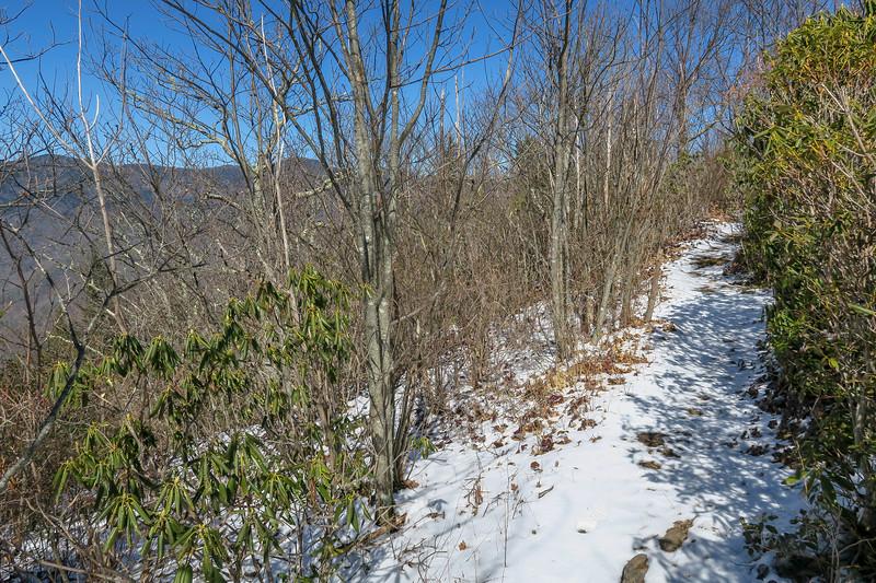 Green Knob Trail -- 5,060'