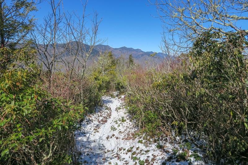 Green Knob Trail -- 4,950'