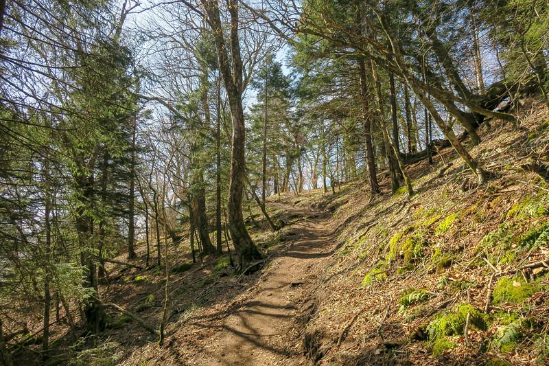 Snowball Trail -- 5,220'