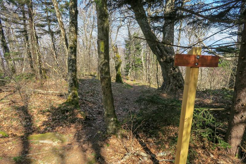 Snowball Trail -- 5,250'