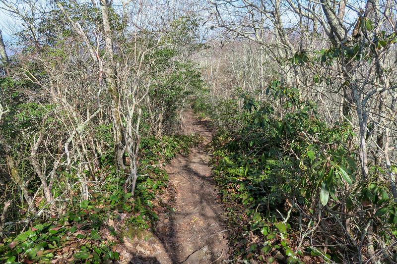 Snowball Trail -- 5,040'