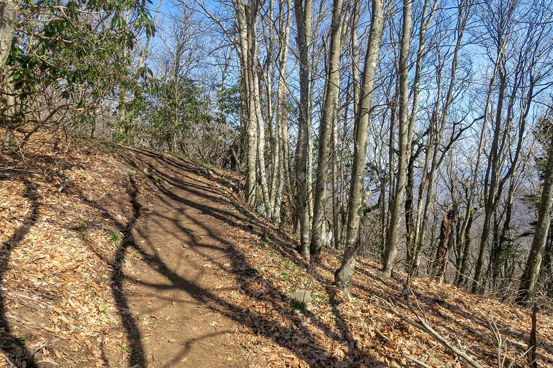 Snowball Trail -- 4,950'
