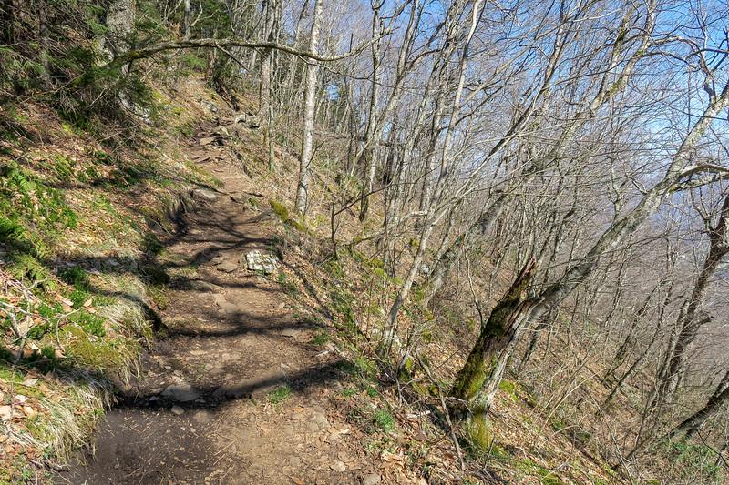 Snowball Trail -- 5,150'