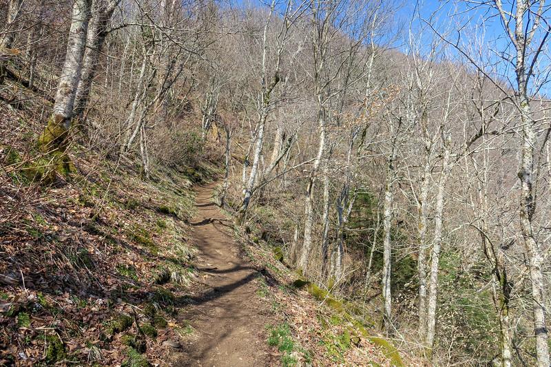 Snowball Trail -- 4,970'
