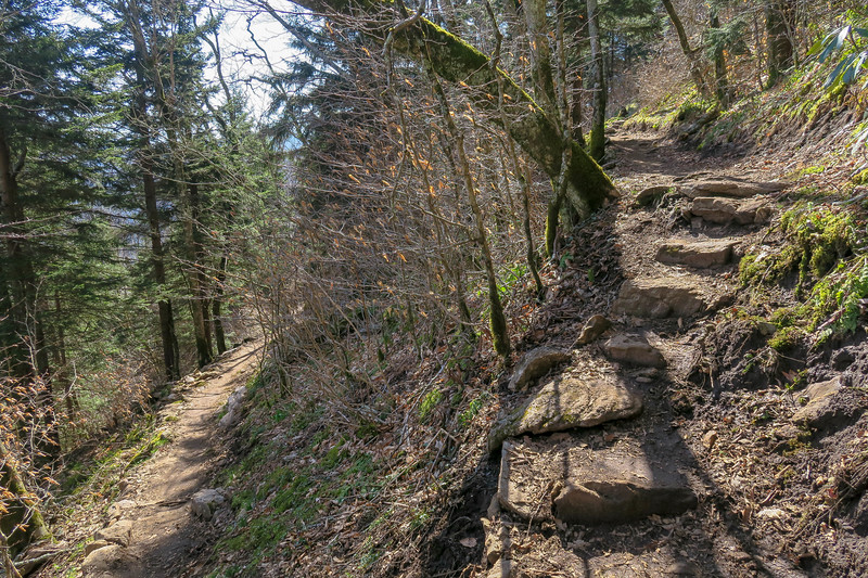 Snowball Trail -- 5,200'