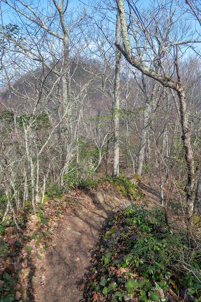 Snowball Trail -- 4,900'