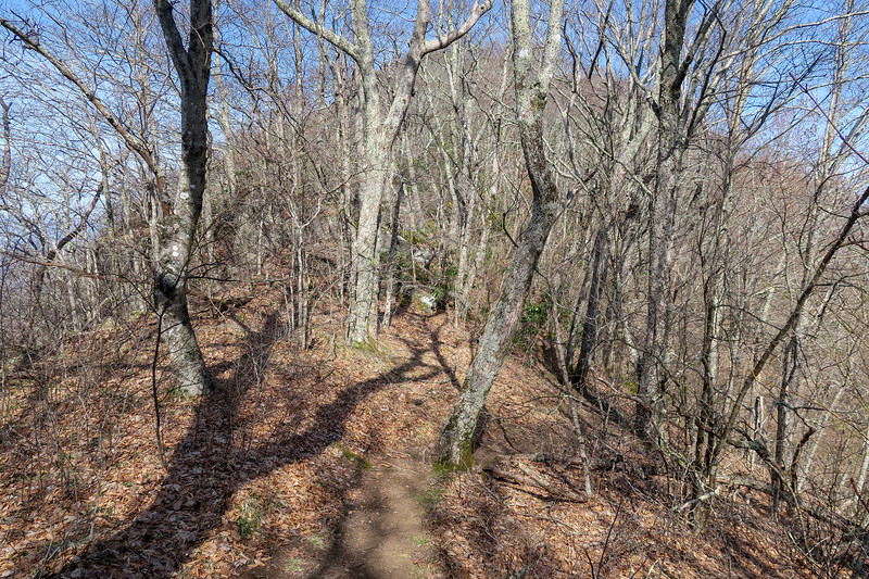 Snowball Trail -- 4,820'
