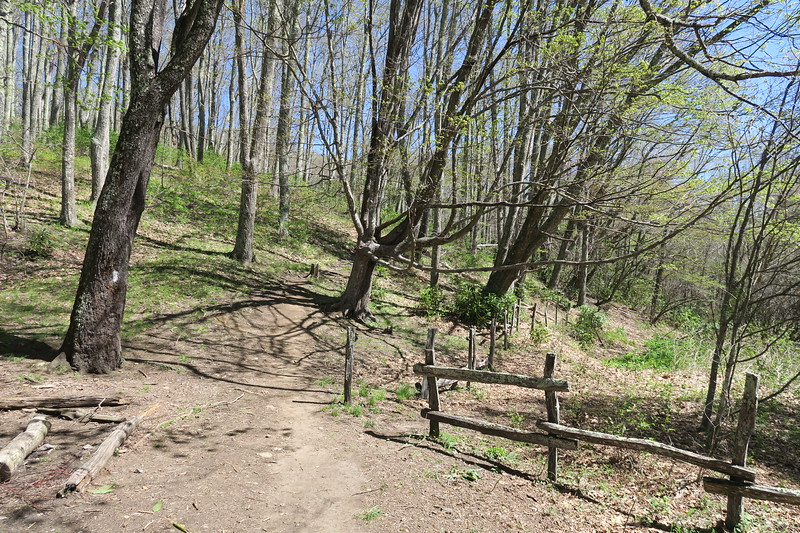 Appalachian Trail -- 4,200'