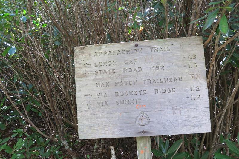 Buckeye Ridge-Appalachian Trail Junction -- 4,250'