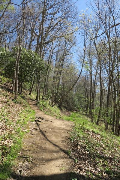 Appalachian Trail -- 4,300'