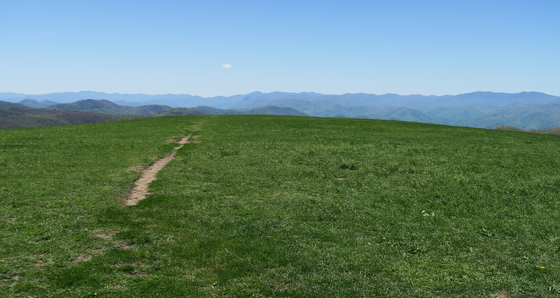 Max Patch Mountain -- 4,629'